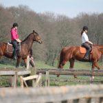 Klanten over buitenritten te paard