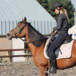 klanten over paardrijlessen - Roos