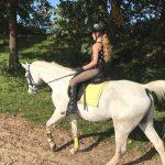 Klanten over paardrijlessen