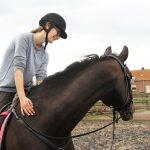 Header paardrijden