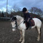 Klanten over paardrijlessen - Evi